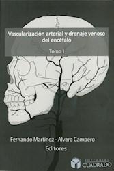 Papel Vascularización Arterial Y Drenaje Venoso Del Encéfalo