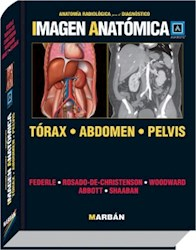 Papel Imagen Anatomica Torax - Abdomen - Pelvis