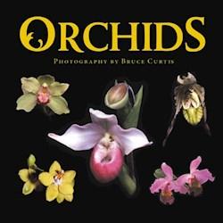 Libro Orchids