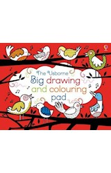 Papel The Usborne Big Drawing and Colouring Pad