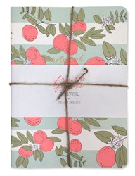 Papel Fruits & Flowers Notebook Collection