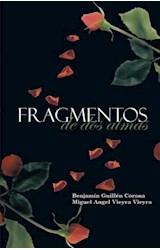 E-book Fragmentos de dos almas