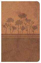 Libro Santa Biblia Clasica Edicion Especial Color Ocre Rvr 1977