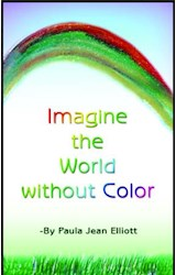 E-book Imagine the World Without Color