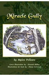 E-book Miracle Gully