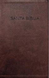 Libro Santa Biblia Nvi