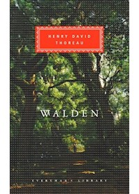 Papel Walden