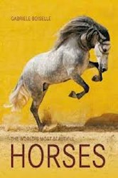 Libro The World'S Most Beatiful Horses