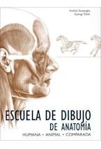 Papel ESCUELA DE DIBUJO DE ANATOMIA