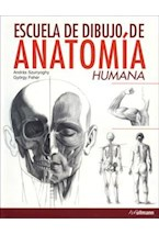 Papel ESCUELA DE DIBUJO DE ANATOMIA HUMANA