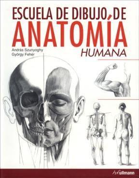 Papel Escuela De Dibujo De Anatomía Humana