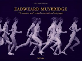 Papel EADWEARD MUYBRIDGE