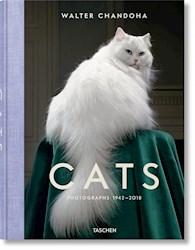 Papel Cats Photographs 1942-2018
