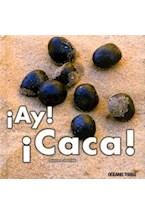 Papel AY, CACA