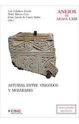 E-book Asturias entre visigodos y mozárabes: (Visigodos y omeyas, VI - Madrid, 2010)