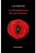 Papel LA METAMORFOSIS DE LAS PLANTAS