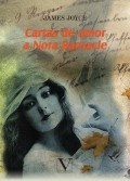 Libro Cartas De Amor A Nora Barnacle