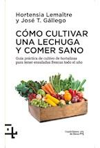 Papel Como Cultivar Una Lechuga Y Comer Sano