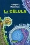 Papel La Célula