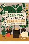 Papel PLANTAS A PARTIR DE SEMILLAS (ILUSTRADO) (CARTONE)