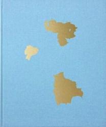 Libro Buscando A Bolivar