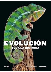 Papel Evolución