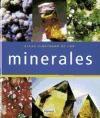 Papel Atlas Ilustrado De Los Minerales