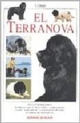 Papel Rottweiler, El Td