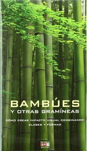 Papel Bambues