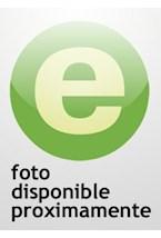 E-book Ortografía correcta del inglés