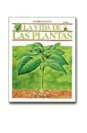 Papel VIDA DE LAS PLANTAS LA (MUNDO INVISIBLE) (CARTONE)