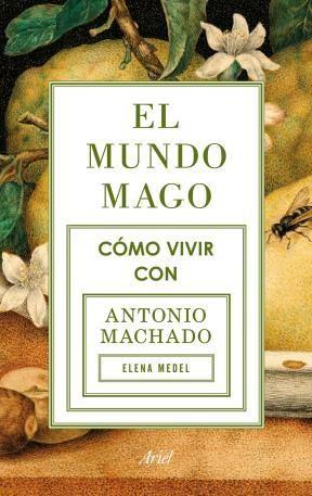 E-book El Mundo Mago