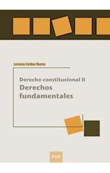 E-book Derechos fundamentales