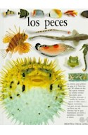 Papel PECES (VISUAL ALTEA) (CARTONE)