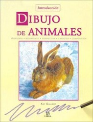 Papel Dibujo De Animales Introduccion