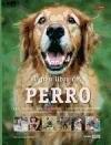 Papel Gran Libro Del Perro, El