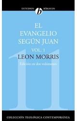 E-book El Evangelio según Juan. Vol. 1