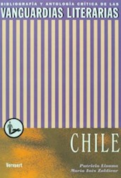 Papel Las Vanguardias Literarias En Chile