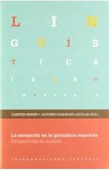 Papel La Excepción En La Gramática Española