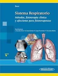 Papel Sistema Respiratorio