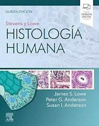 Papel Stevens Y Lowe. Histología Humana Ed.5