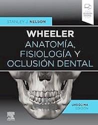 Papel Wheeler Anatomía, Fisiología Y Oclusión Dental Ed.11