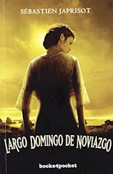 Libro Largo Domingo De Noviazgo