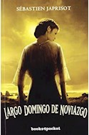 Papel LARGO DOMINGO DE NOVIAZGO (COLECCION NARRATIVA)