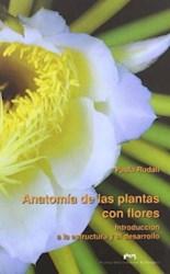 Papel Anatomía De Las Plantas Con Flores