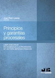 Libro Principios Y Garantias Procesales.