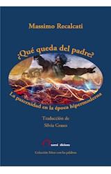 E-book ¿Qué queda del padre?