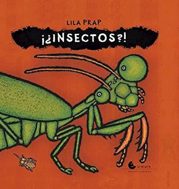 Papel ¡¿Insectos?!