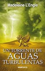 Libro Un Torrente De Aguas Turbulentas  ( Libro 4 El Quinteto Del Tiempo )
