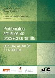 Libro Problematica Actual De Los Procesos De Familia.